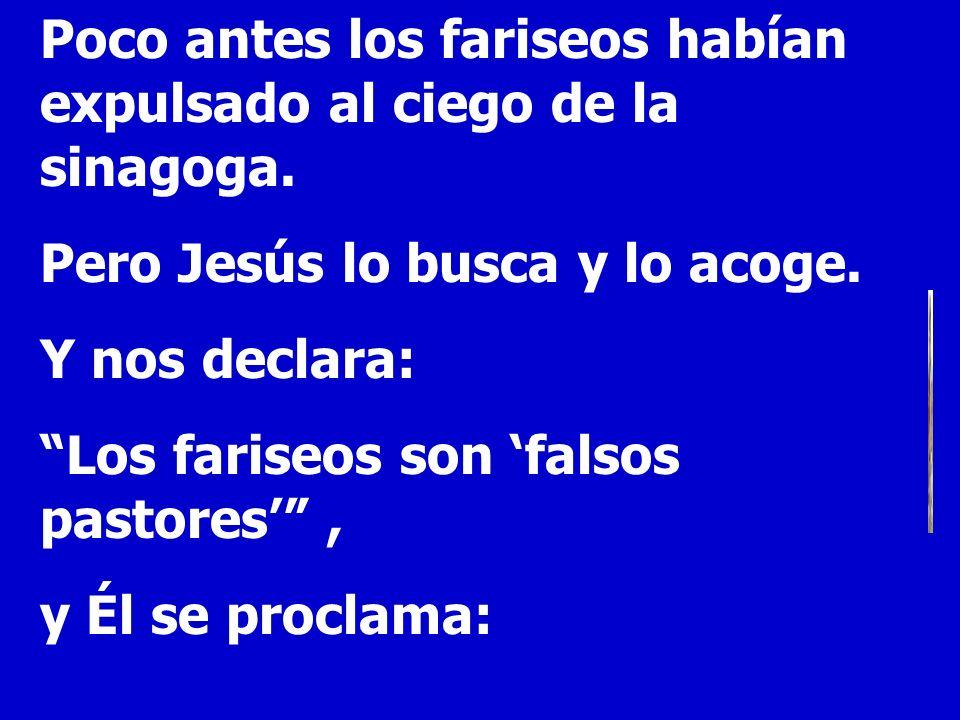 Poco antes los fariseos habían expulsado al ciego de la sinagoga. Pero Jesús lo busca y lo acoge. Y nos declara: Los fariseos son falsos pastores, y É