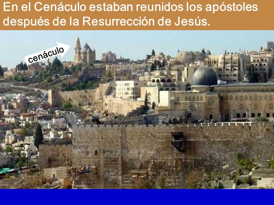 19 Al anochecer de aquel día, el primero de la semana, estaban los discípulos en una casa, con las puertas cerradas por miedo a los judíos.