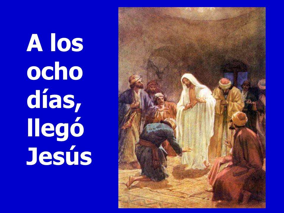 24 Tomás, uno de los doce, llamado el Mellizo, no estaba con ellos cuando vino Jesús. 25 Y los otros discípulos le decían: «Hemos visto al Señor.» Per