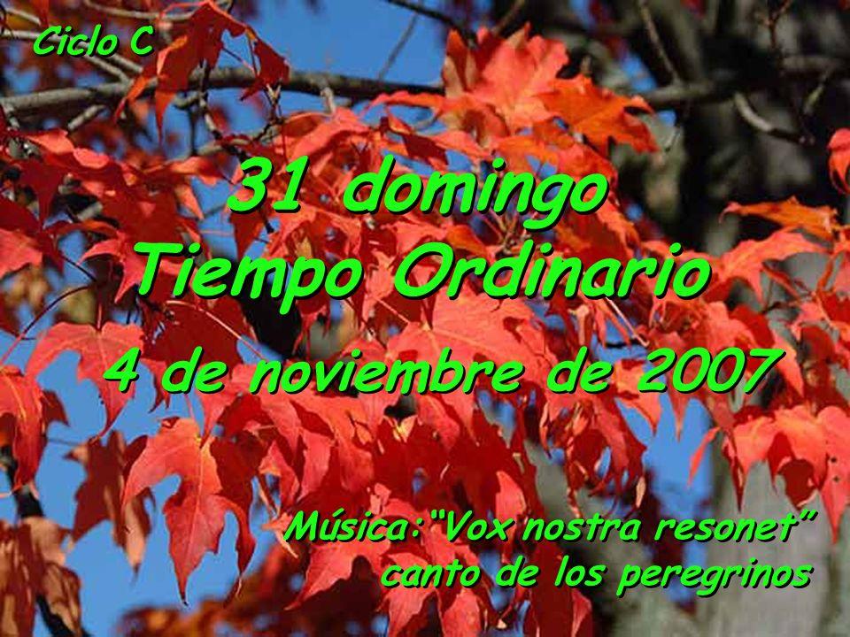 Ciclo C 31 domingo Tiempo Ordinario 4 de noviembre de 2007 Música:Vox nostra resonet canto de los peregrinos