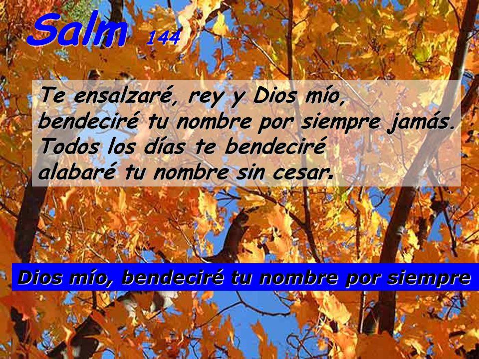 Salm 144 Te ensalzaré, rey y Dios mío, bendeciré tu nombre por siempre jamás.