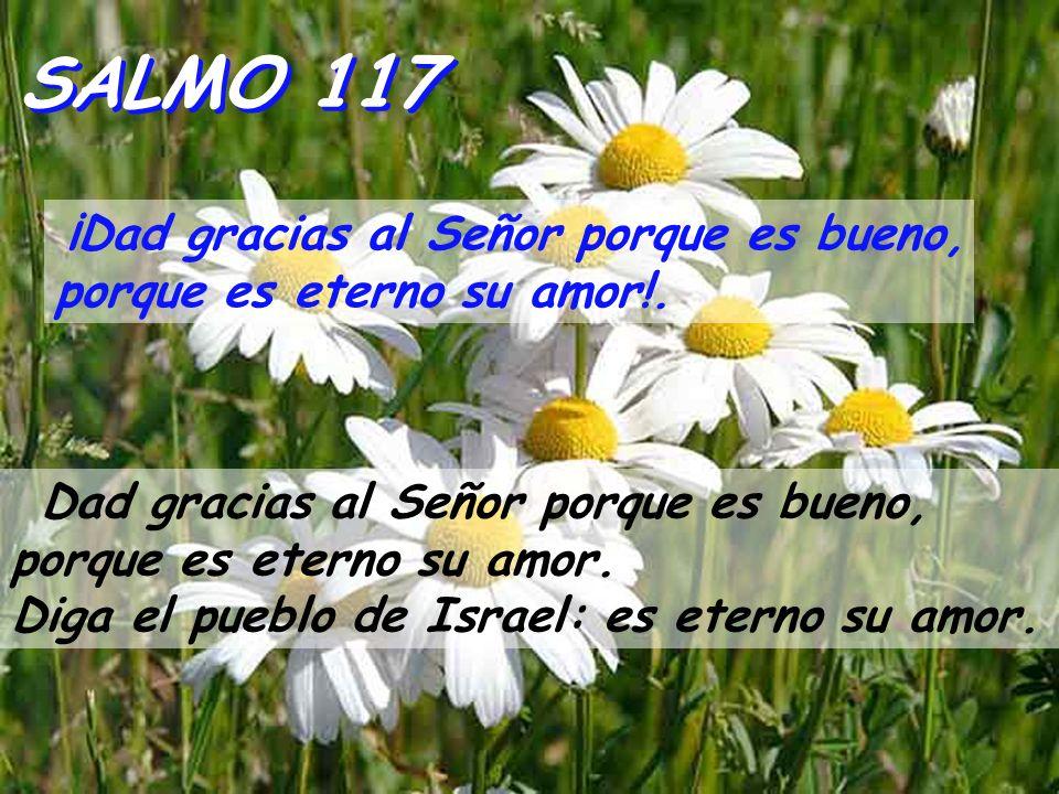 Hechos 5,12-16 Los apóstoles realizaban muchos signos y prodigios en medio del pueblo.