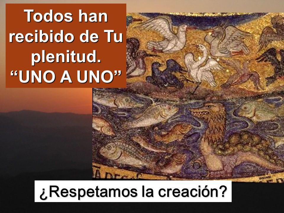 Todos han recibido de Tu plenitud. UNO A UNO ¿Respetamos la creación?