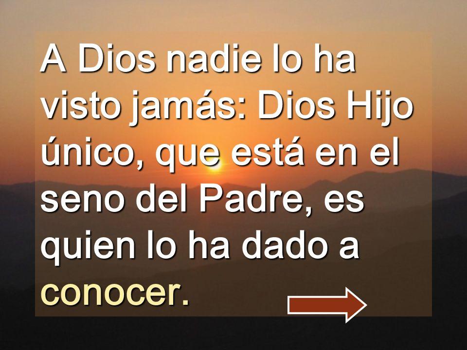 A Dios nadie lo ha visto jamás: Dios Hijo único, que está en el seno del Padre, es quien lo ha dado a conocer.
