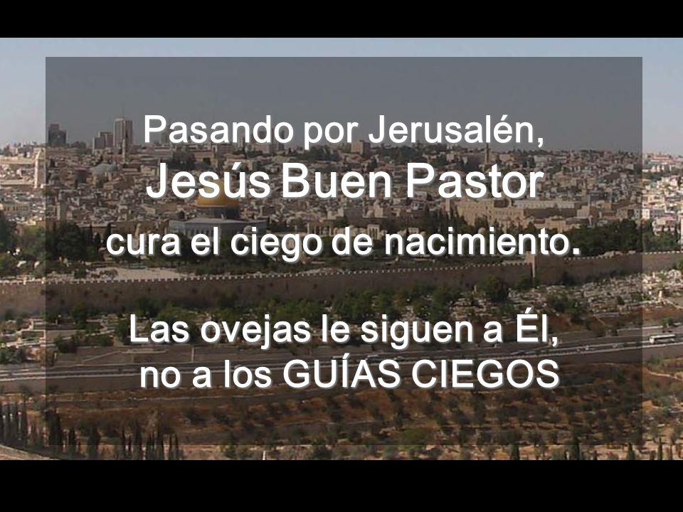 Pasando por Jerusalén, Jesús Buen Pastor cura el ciego de nacimiento.
