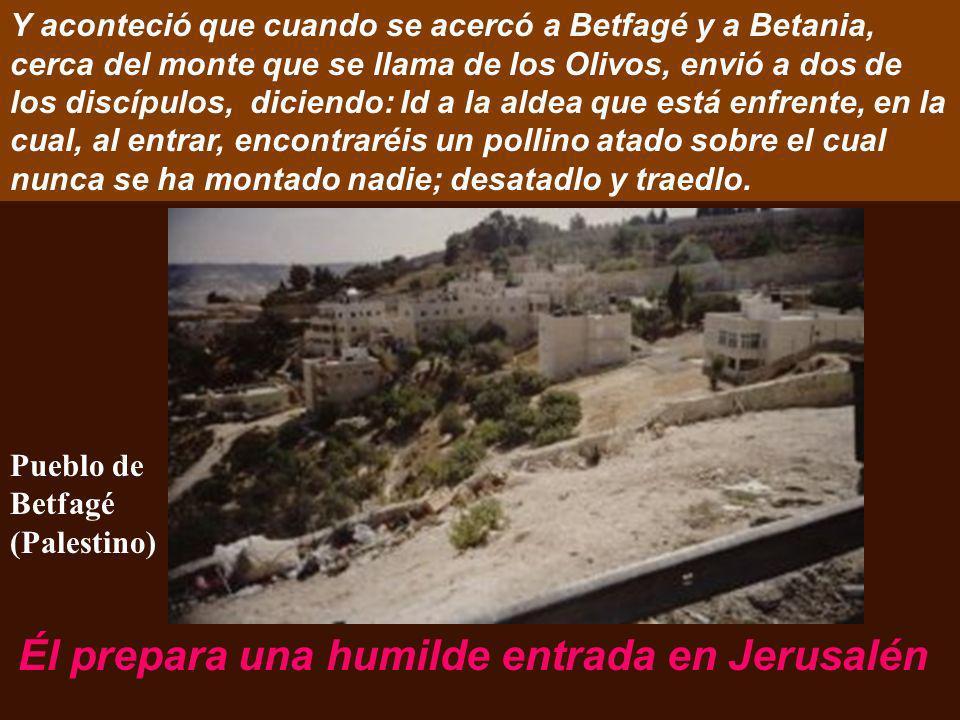 Lc 19:28-40 Jesús iba delante, subiendo hacia Jerusalén. Jesús va delante nuestro en este CAMINO. Ciudad de Jerusalén desde el Monte de los Olivos
