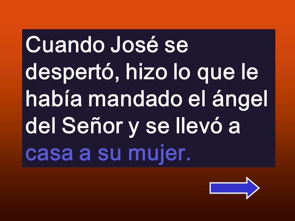 Cuando José se despertó, hizo lo que le había mandado el ángel del Señor y se llevó a casa a su mujer.