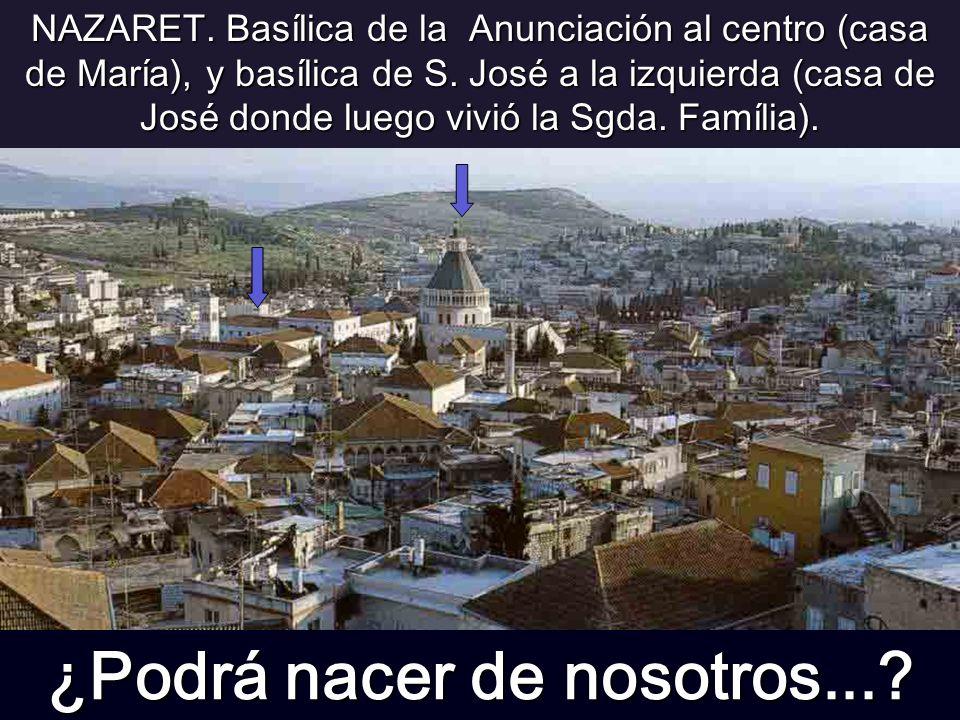 NAZARET.Basílica de la Anunciación al centro (casa de María), y basílica de S.