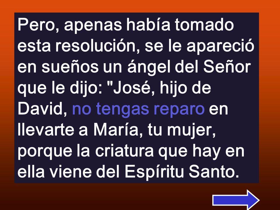 Pero, apenas había tomado esta resolución, se le apareció en sueños un ángel del Señor que le dijo: José, hijo de David, no tengas reparo en llevarte a María, tu mujer, porque la criatura que hay en ella viene del Espíritu Santo.