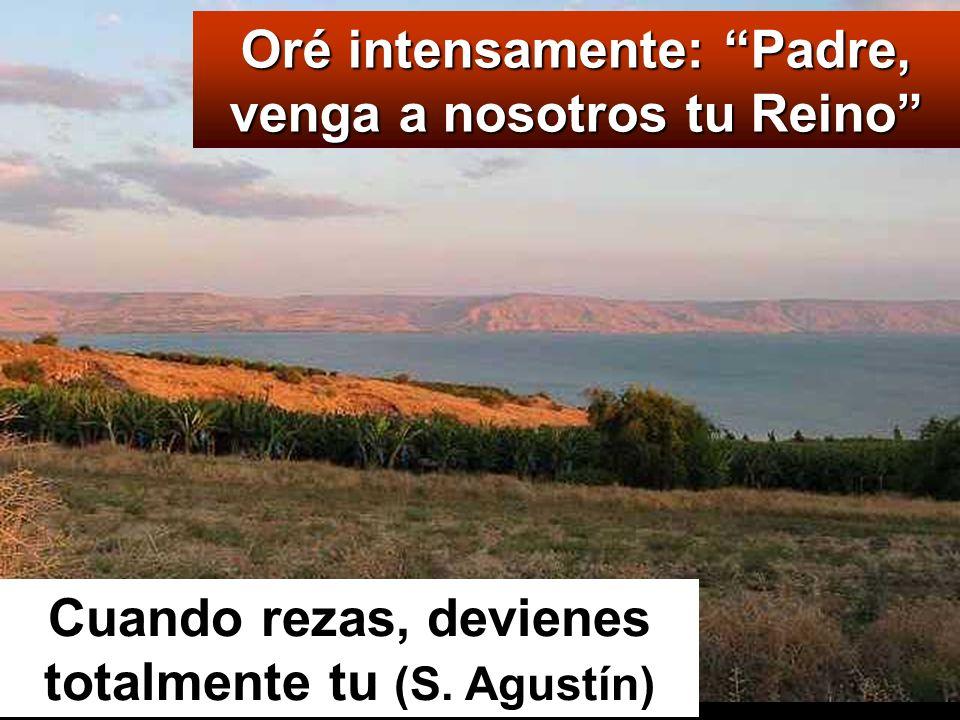 Oré intensamente: Padre, venga a nosotros tu Reino Cuando rezas, devienes totalmente tu (S.
