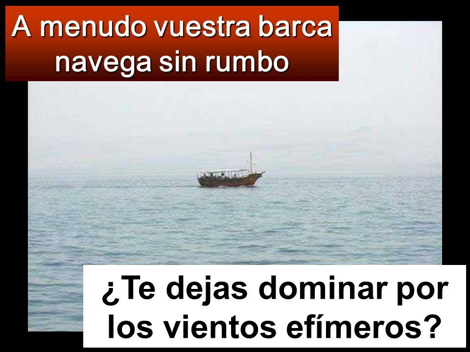 Mientras tanto, la barca iba ya muy lejos de tierra, sacudida por las olas, porque el viento era contrario.