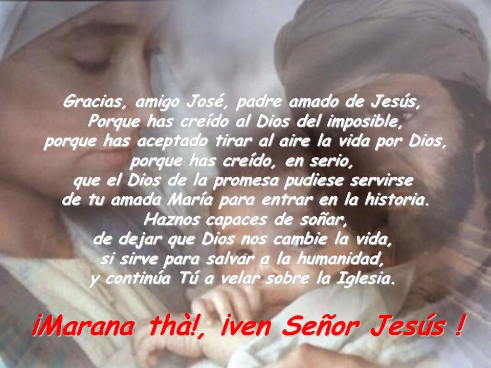 Gracias, amigo José, padre amado de Jesús, Porque has creído al Dios del imposible, porque has aceptado tirar al aire la vida por Dios, porque has cre