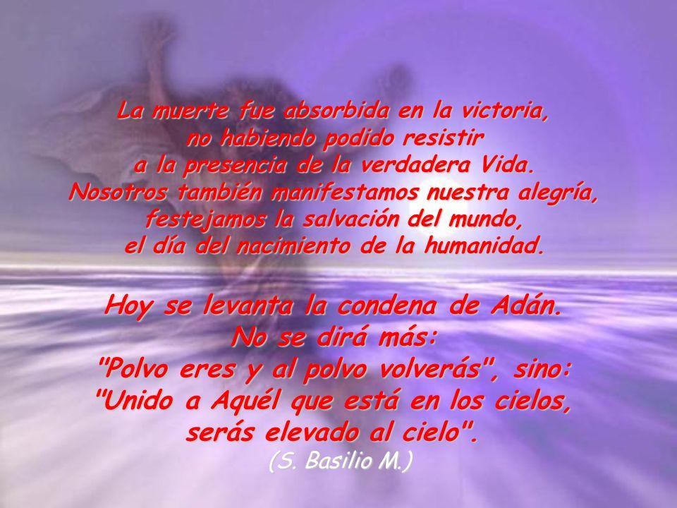 La muerte fue absorbida en la victoria, no habiendo podido resistir a la presencia de la verdadera Vida. Nosotros también manifestamos nuestra alegría