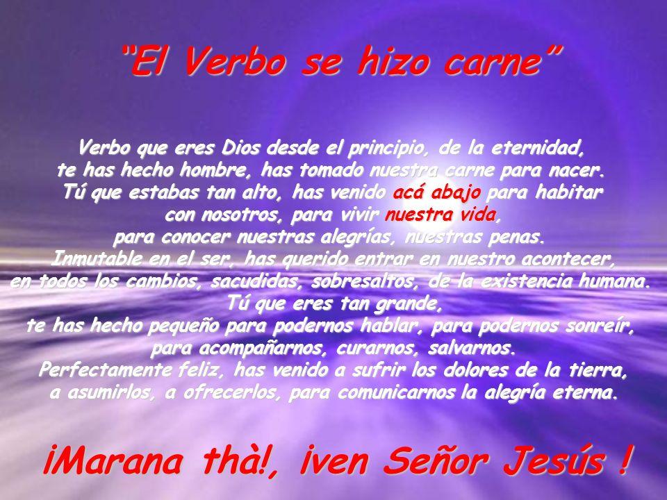El Verbo se hizo carne Verbo que eres Dios desde el principio, de la eternidad, te has hecho hombre, has tomado nuestra carne para nacer. Tú que estab