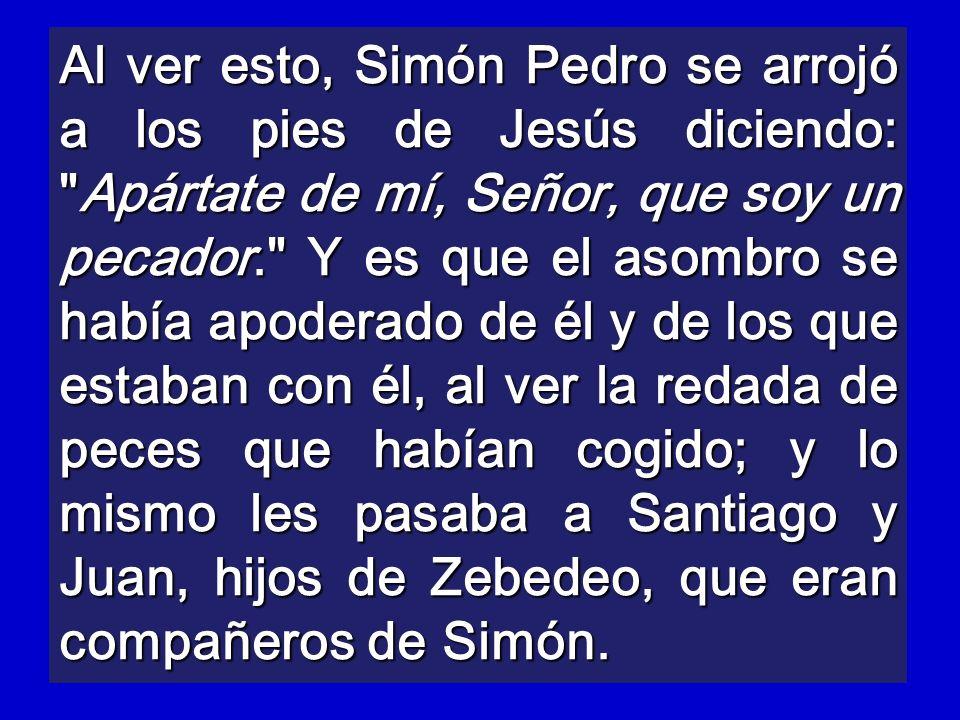 Al ver esto, Simón Pedro se arrojó a los pies de Jesús diciendo: