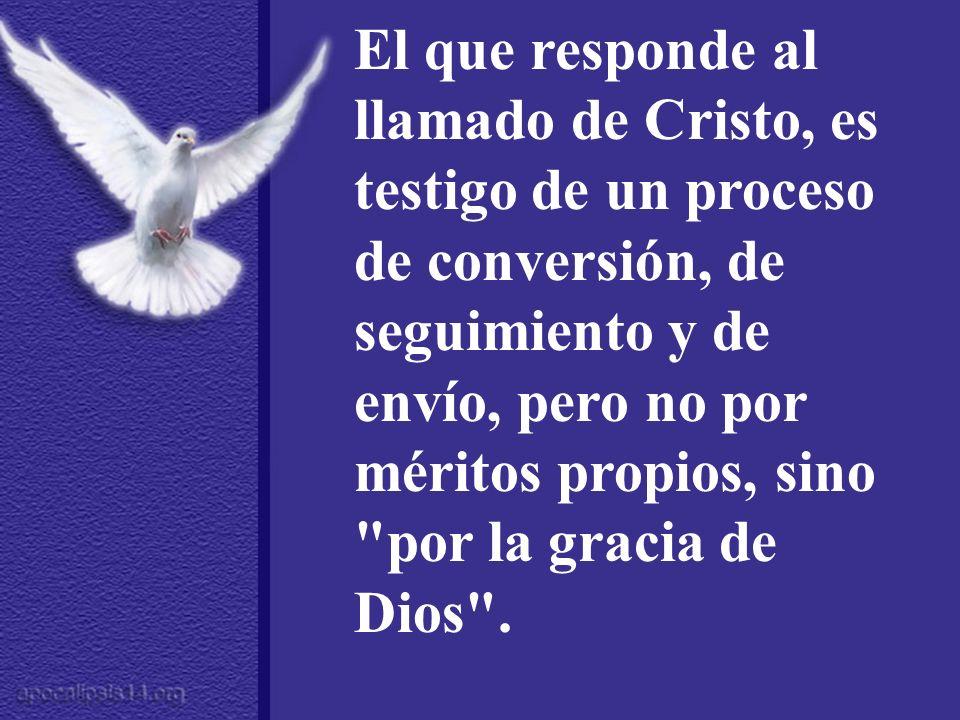 El que responde al llamado de Cristo, es testigo de un proceso de conversión, de seguimiento y de envío, pero no por méritos propios, sino