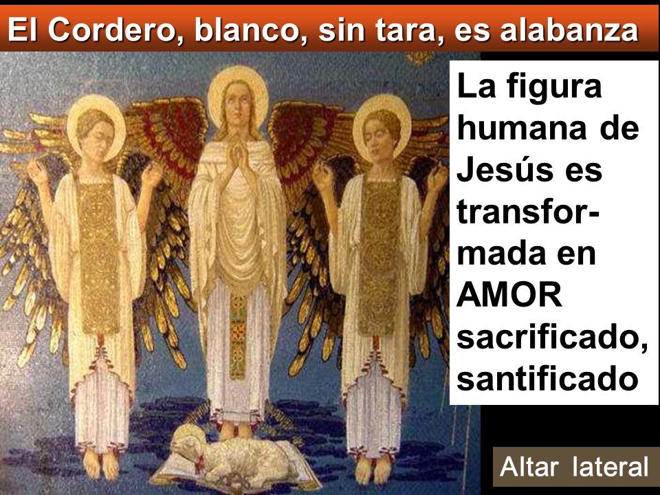 La figura humana de Jesús es transfor- mada en AMOR sacrificado, santificado El Cordero, blanco, sin tara, es alabanza Altar lateral