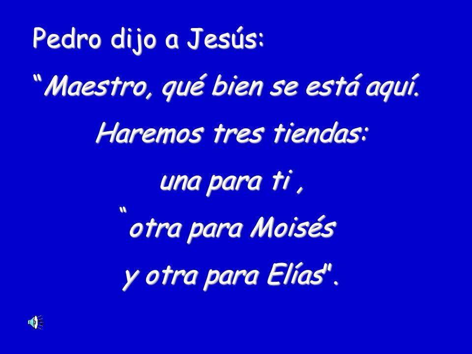 Pedro dijo a Jesús: Maestro,Maestro, qué bien se está aquí. Haremos tres tiendas: una para ti, otra para Moisés y otra para Elías.