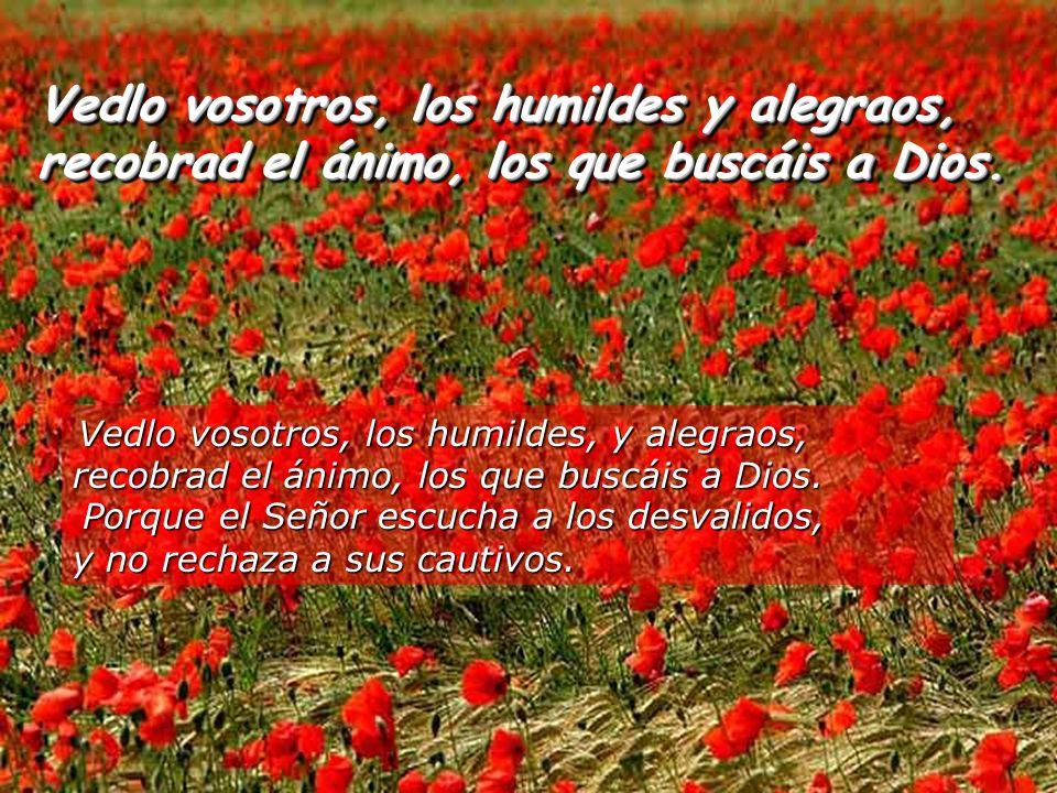 Vedlo vosotros, los humildes y alegraos, recobrad el ánimo, los que buscáis a Dios.