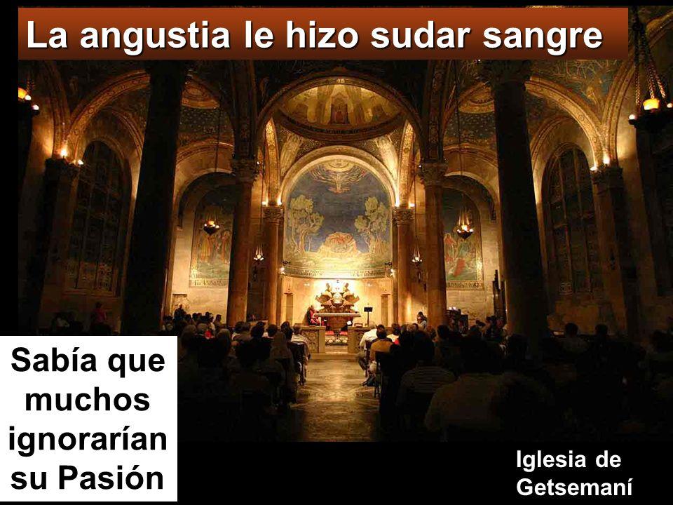 La angustia le hizo sudar sangre Iglesia de Getsemaní Sabía que muchos ignorarían su Pasión