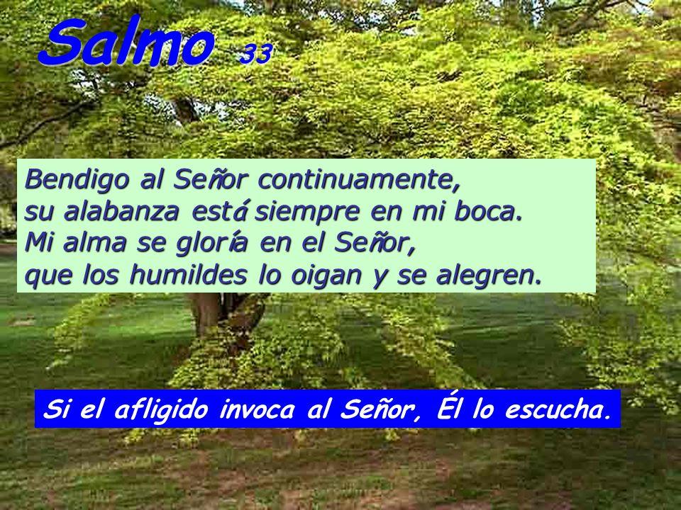 Salmo 33 Bendigo al Se ñ or continuamente, su alabanza est á siempre en mi boca.