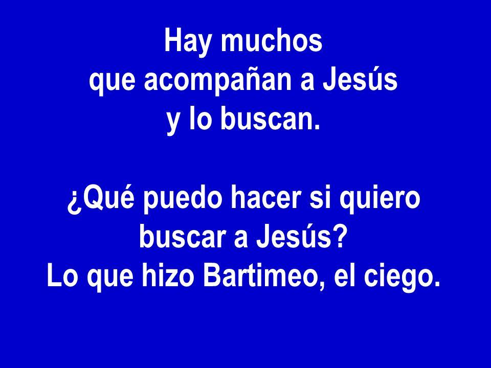 Hay muchos que acompañan a Jesús y lo buscan. ¿Qué puedo hacer si quiero buscar a Jesús? Lo que hizo Bartimeo, el ciego.