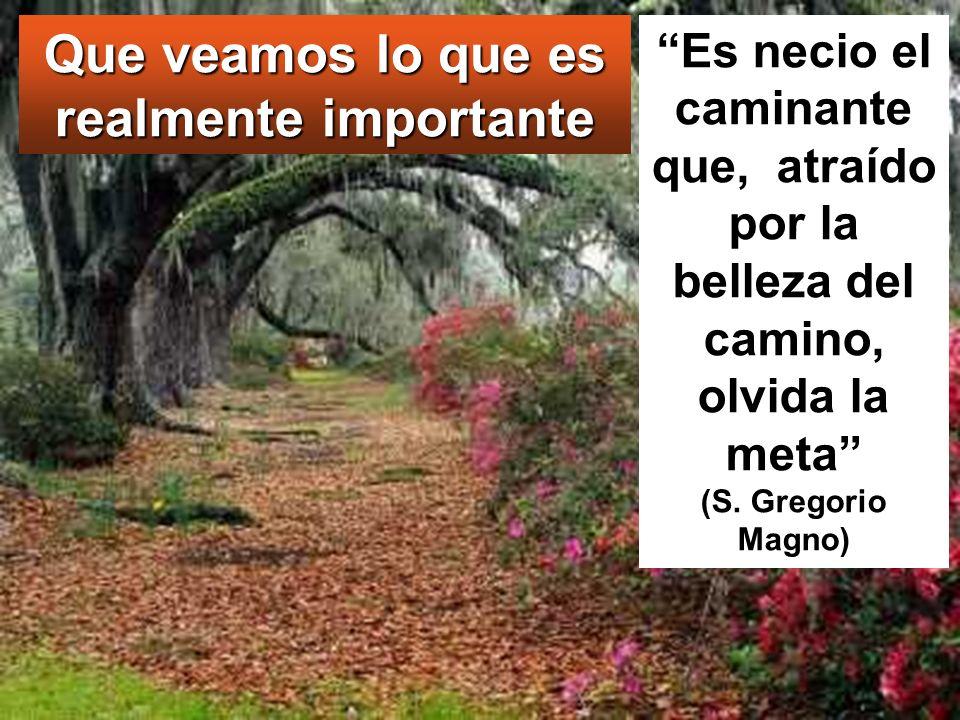 Es necio el caminante que, atraído por la belleza del camino, olvida la meta (S. Gregorio Magno) Que veamos lo que es realmente importante