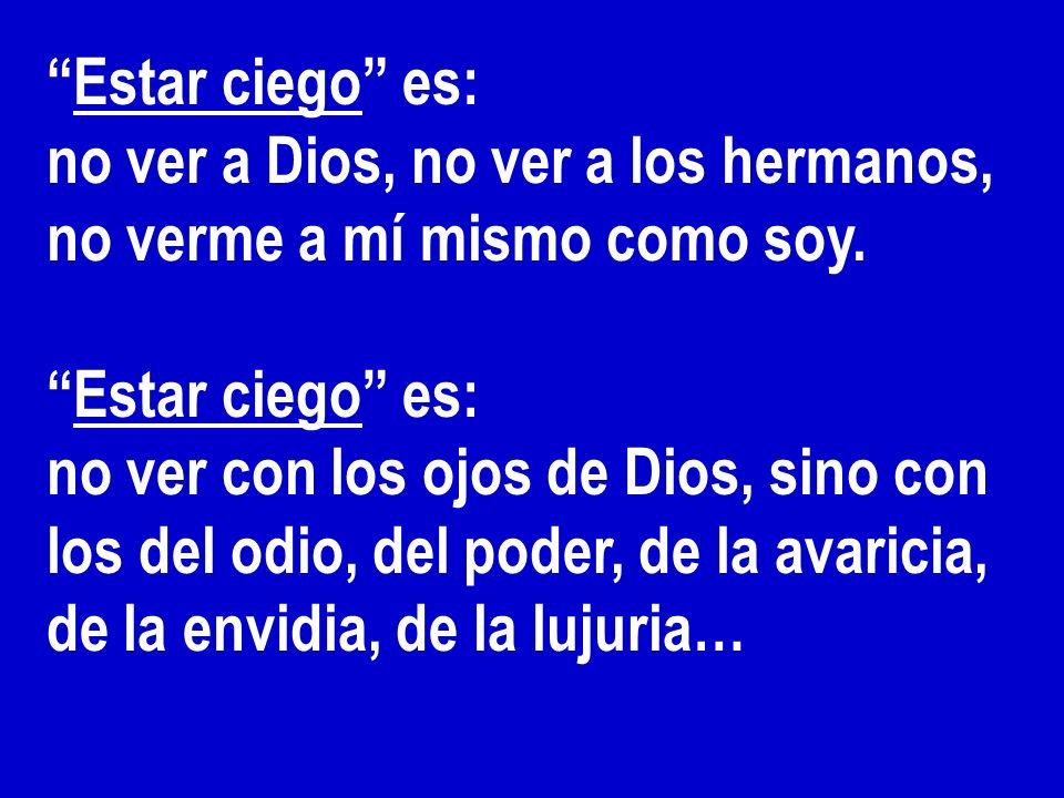 Estar ciego es: no ver a Dios, no ver a los hermanos, no verme a mí mismo como soy. Estar ciego es: no ver con los ojos de Dios, sino con los del odio