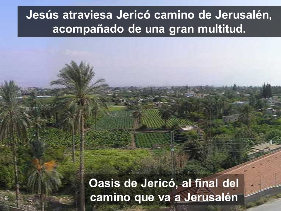 Oasis de Jericó, al final del camino que va a Jerusalén Jesús atraviesa Jericó camino de Jerusalén, acompañado de una gran multitud.