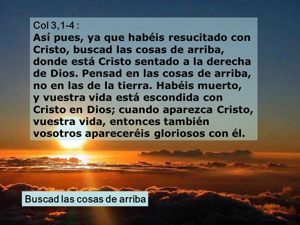Col 3,1-4 : Así pues, ya que habéis resucitado con Cristo, buscad las cosas de arriba, donde está Cristo sentado a la derecha de Dios.
