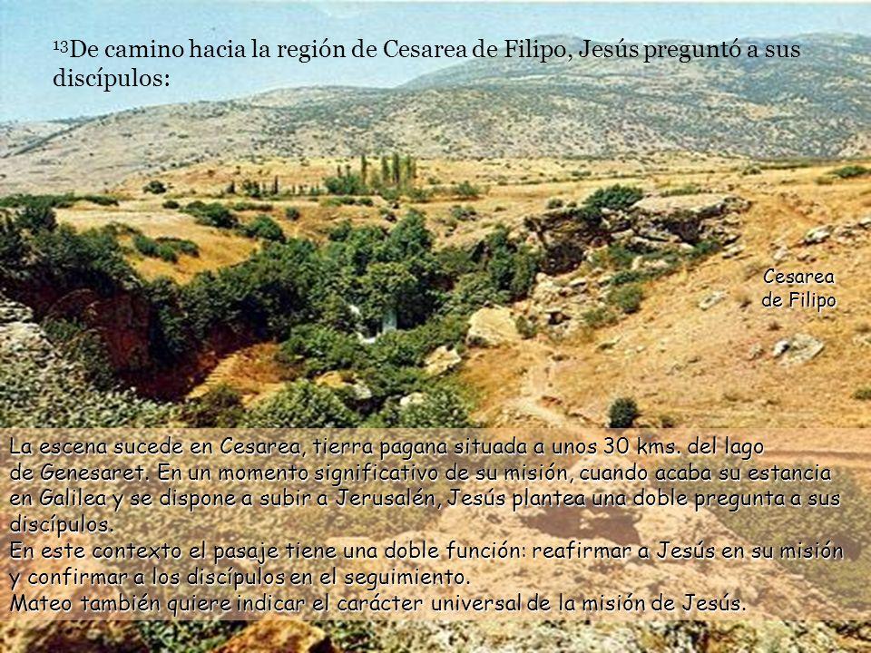 La roca sobre la que se construye la Nueva Comunidad es la fe en Jesús como Mesías Hijo de Dios vivo.