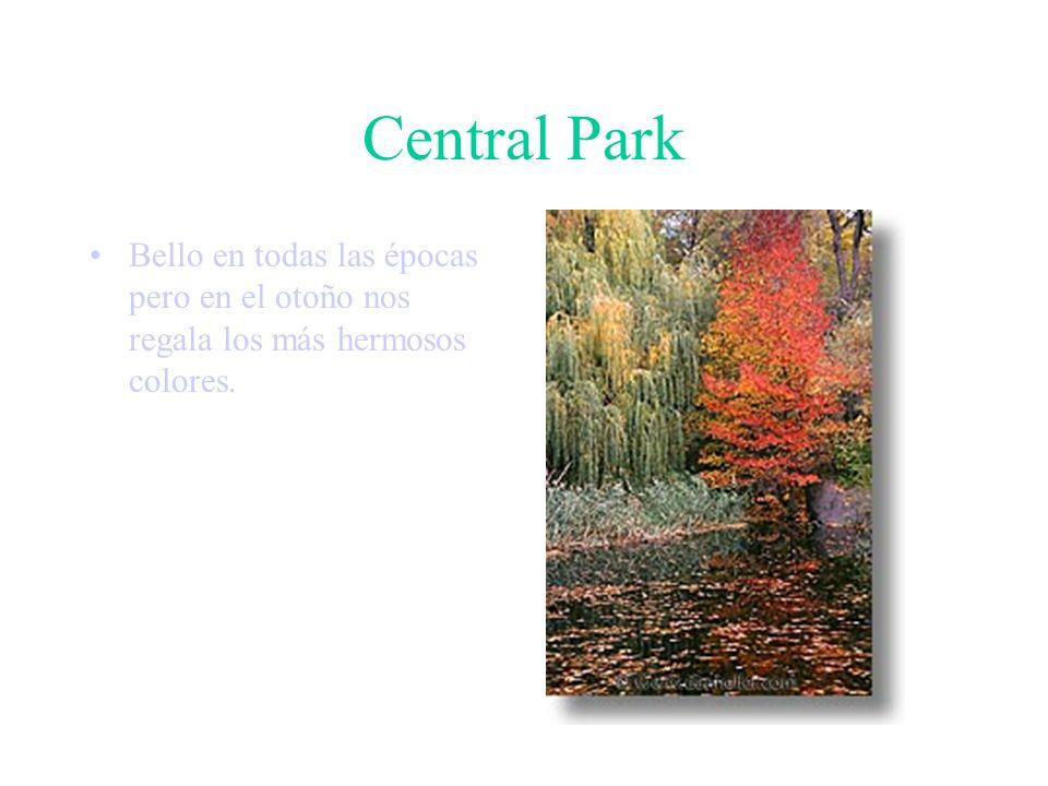Central Park Numerosos lagos, campos de béisbol y de básquet, una reserva de vida salvaje, un santuario de aves son algunos de los atractivos.