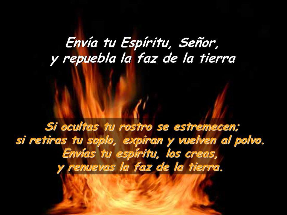 SALMO 103 Envía tu Espíritu, Señor, y repuebla la faz de la tierra Bendice al Señor, alma mía; ¡Señor, Dios mío, qué grande eres.