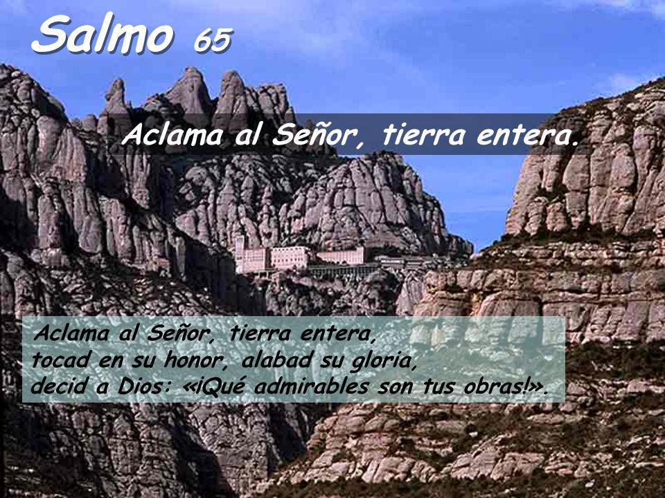 Hechos 8:5-8,14-17 Felipe bajó a la ciudad de Samaría y estuvo allí predicando a Cristo. La gente escuchaba con aprobación las palabras de Felipe y co