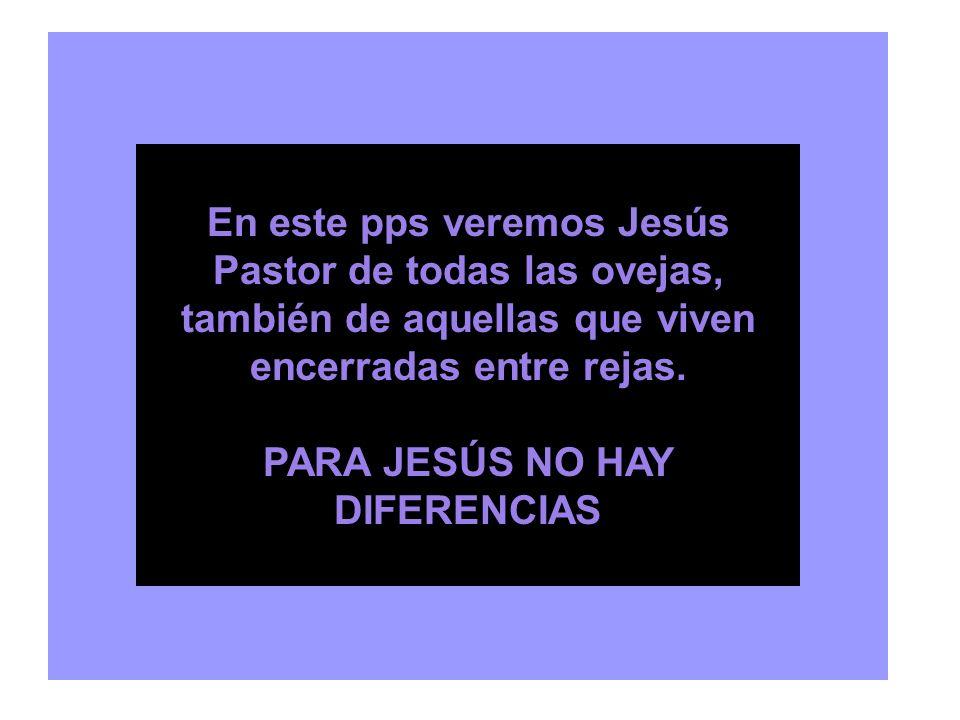 Domingo de PASCUA: Este es el DÍA Domingo 2: CREER sin ver Domingo 3: RECONOCERLO Domingo 4: El PASTOR nos reconoce Domingo 5: MINISTERIOS eclesiales