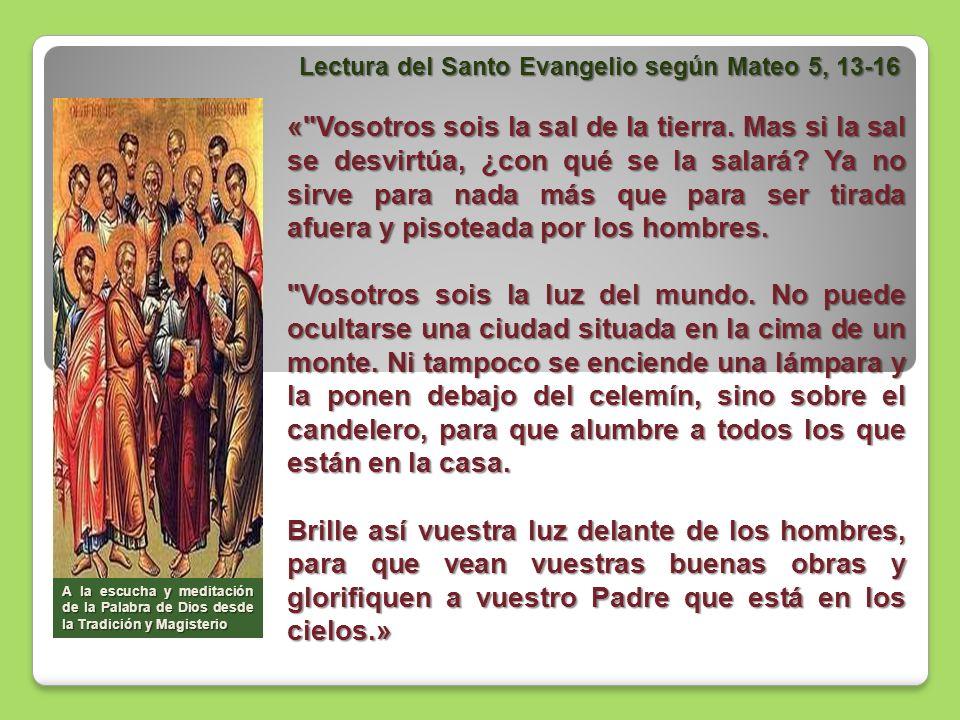Meditemos la Palabra con el Papa « Vosotros sois la luz del mundo.... .