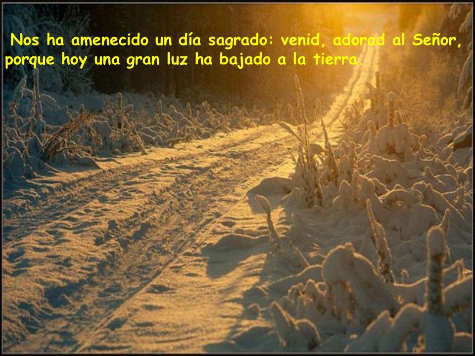 Nos ha amenecido un día sagrado: venid, adorad al Señor, porque hoy una gran luz ha bajado a la tierra.