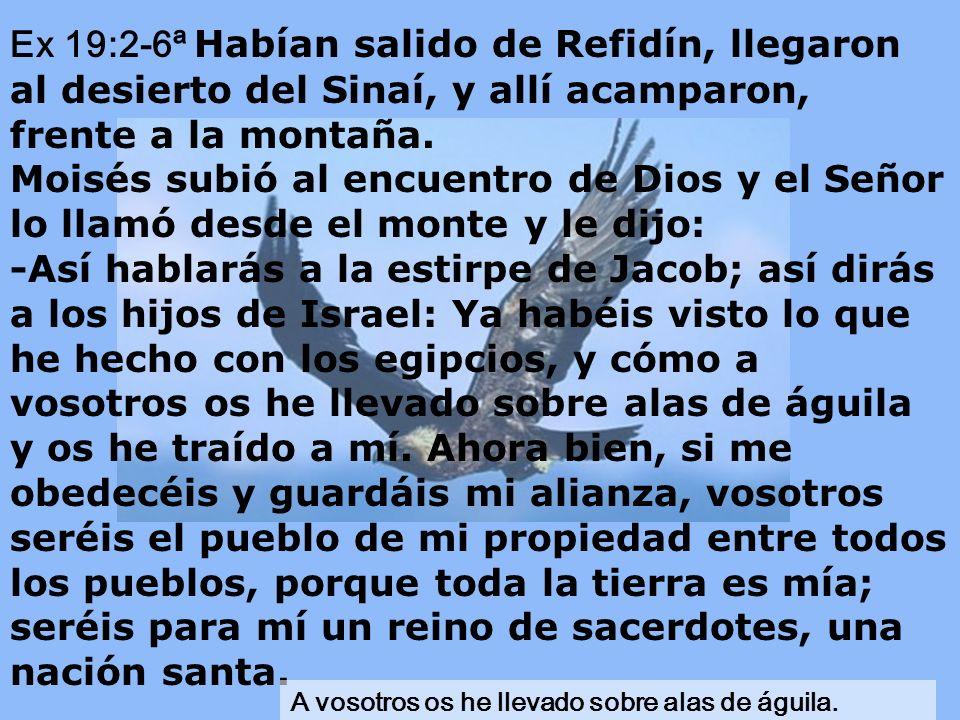 Ex 19:2-6ª Habían salido de Refidín, llegaron al desierto del Sinaí, y allí acamparon, frente a la montaña.