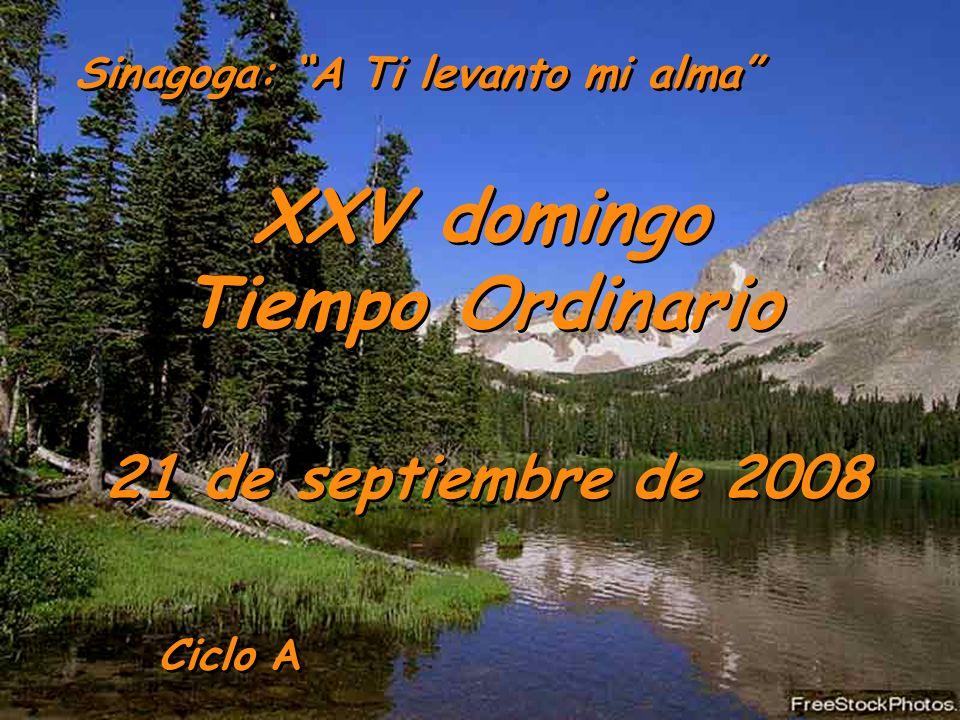 Ciclo A XXV domingo Tiempo Ordinario 21 de septiembre de 2008 Sinagoga: A Ti levanto mi alma