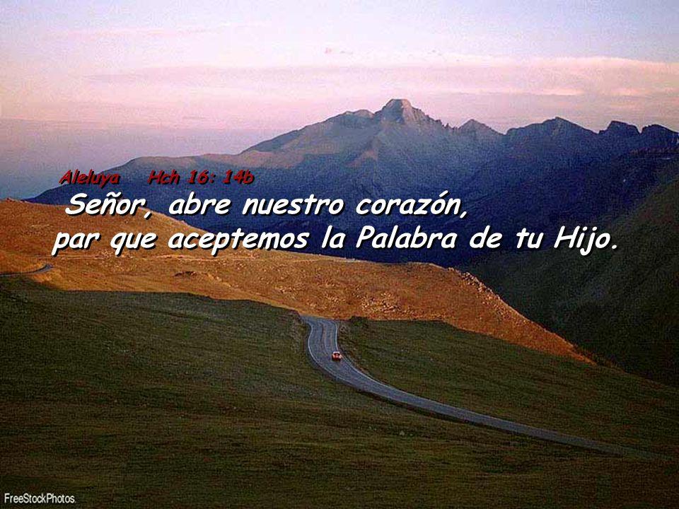 Aleluya Hch 16: 14b Señor, abre nuestro corazón, par que aceptemos la Palabra de tu Hijo.