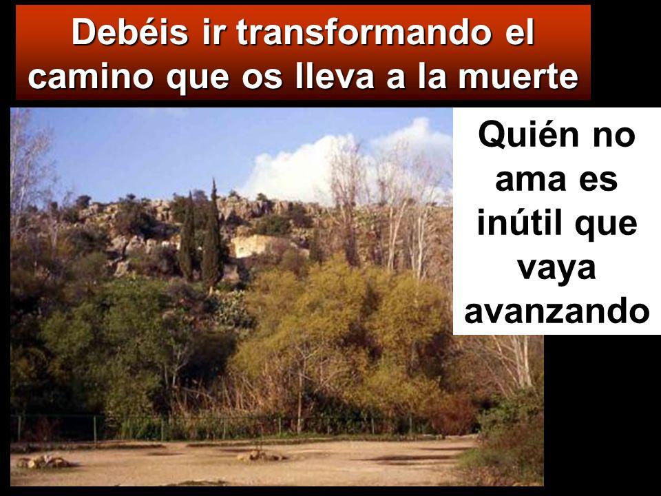 Debéis ir transformando el camino que os lleva a la muerte Quién no ama es inútil que vaya avanzando