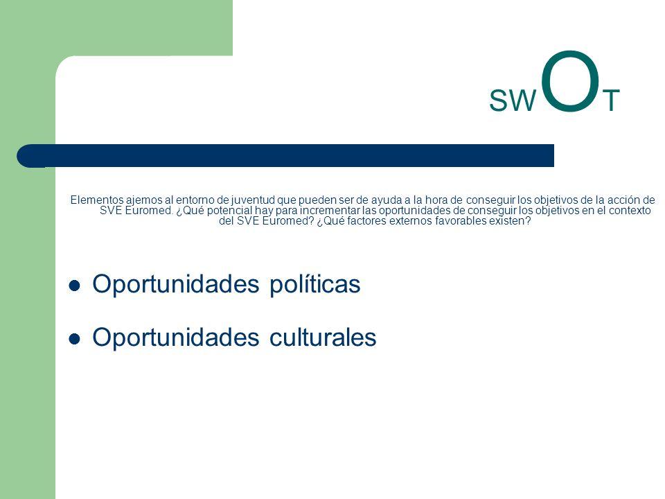 SW O T Elementos ajemos al entorno de juventud que pueden ser de ayuda a la hora de conseguir los objetivos de la acción de SVE Euromed. ¿Qué potencia