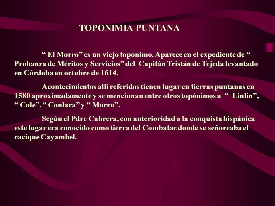 TOPONIMIA PUNTANA El Morro es un viejo topónimo. Aparece en el expediente de Probanza de Méritos y Servicios del Capitán Tristán de Tejeda levantado e