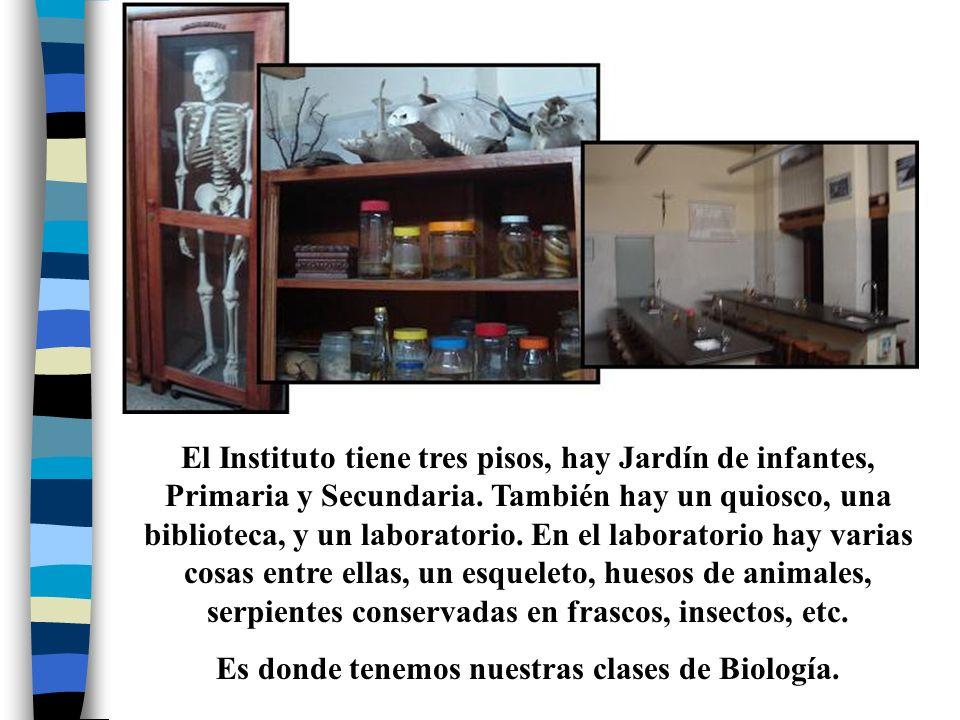 El Instituto tiene tres pisos, hay Jardín de infantes, Primaria y Secundaria. También hay un quiosco, una biblioteca, y un laboratorio. En el laborato
