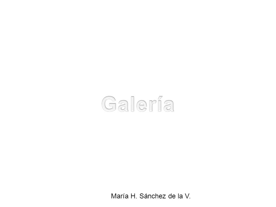 María H. Sánchez de la V.