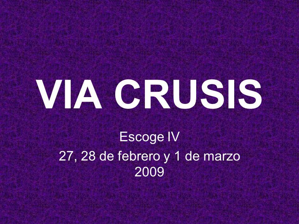 VIA CRUSIS Escoge IV 27, 28 de febrero y 1 de marzo 2009