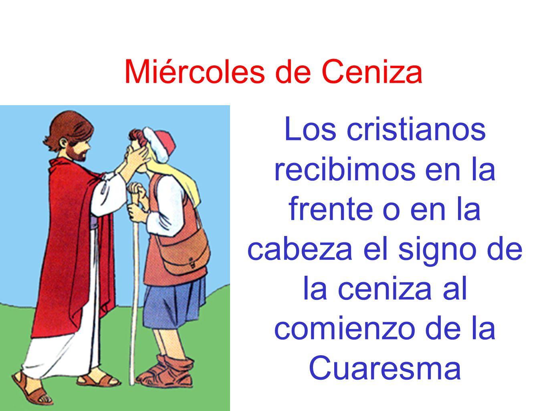Las cenizas En la procesión del domingo de Ramos se bendicen las palmas y ramos de olivo con los que acompañamos a Jesús en su entrada triunfal en Jerusalén.