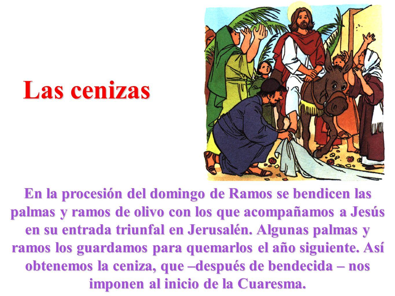 Las cenizas En la procesión del domingo de Ramos se bendicen las palmas y ramos de olivo con los que acompañamos a Jesús en su entrada triunfal en Jer