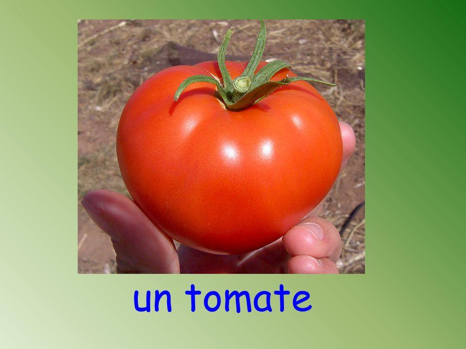 un tomate