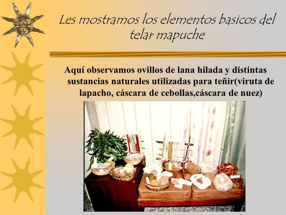 Les mostramos los elementos basicos del telar mapuche Aquí observamos ovillos de lana hilada y distintas sustancias naturales utilizadas para teñir(viruta de lapacho, cáscara de cebollas,cáscara de nuez)